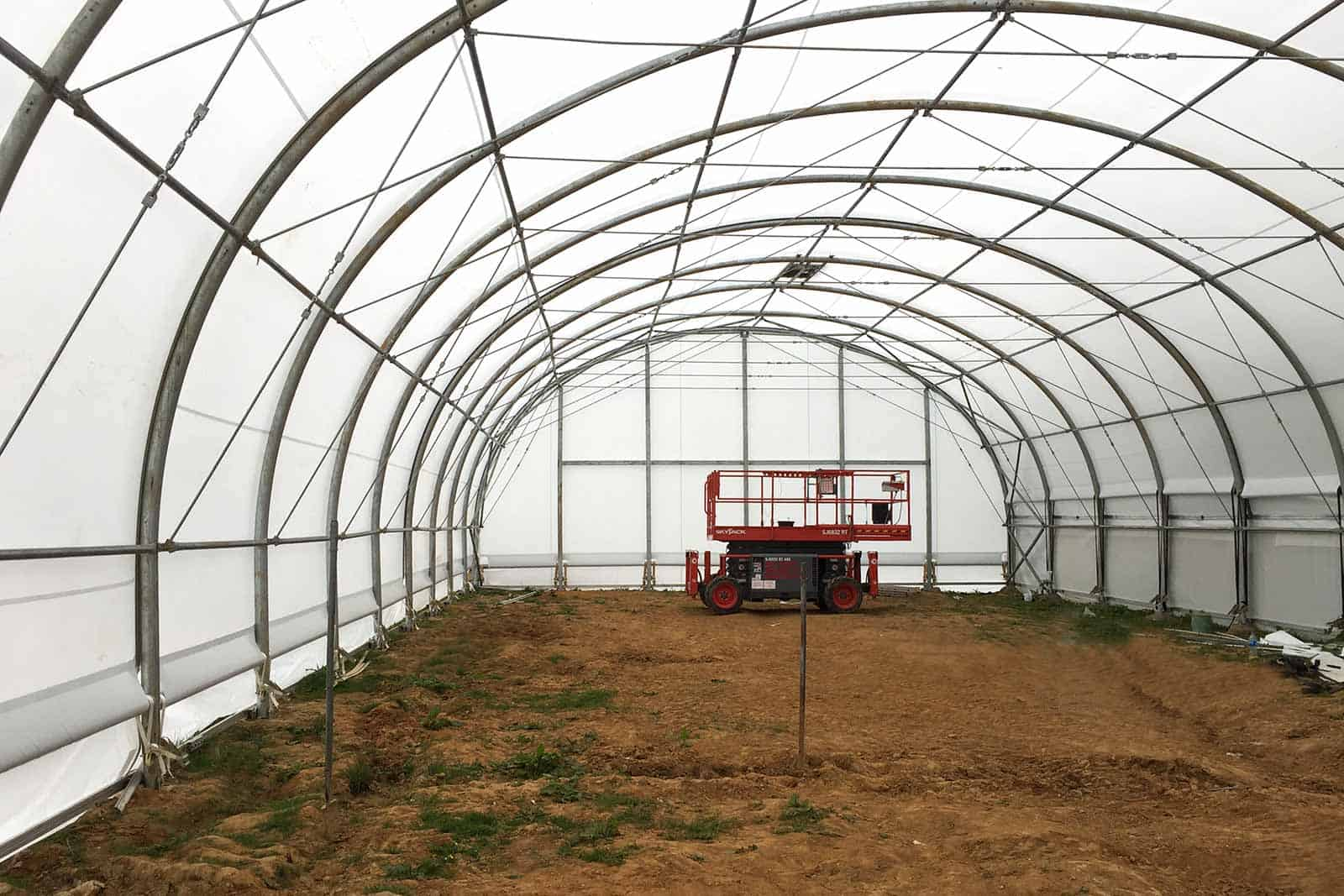 Internal view of a McGregor Polytunnel - steel-framed fabric commercial structure