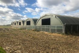 McGregor Livestock Pop-Up building - modular design with no groundworks or concrete needed