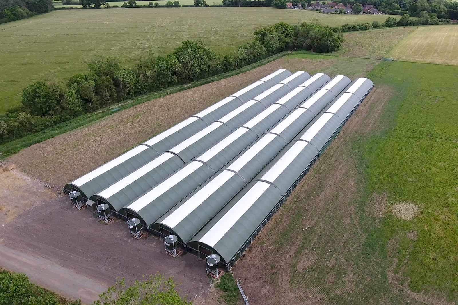 Multi-span Turkey Building by McGregor Polytunnels - modular design turkey housing